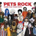 ネコ顔にイヌ顔… PETS ROCK